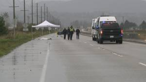 Suspect arrested in Abbotsford fatal hit and run