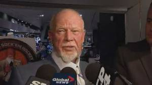 After history of controversial remarks, Don Cherry fired from Hockey Night in Canada due to poppy rant