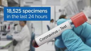 Coronavirus: Premier Doug Ford now considering to regional reopening plan