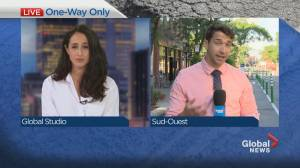 Sud-Ouest merchants decry change to Notre-Dame Street traffic patterns