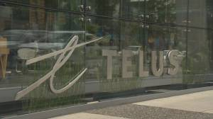 Scammers piggy-backing on Telus email outage