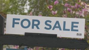 """A lot of people have just put on the pause button,"": Fewer Okanagan residents list homes for sale amid pandemic"