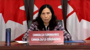 Coronavirus: Canada's top doctor comments on airlines selling middle seat on flights