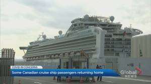 Some Canadian cruise ship passengers returning home