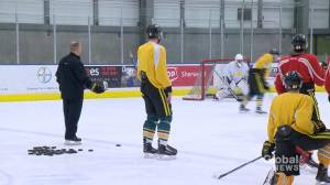 Cougars clawing to get back on the ice (01:41)