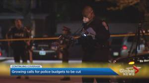 Calls growing to defund Toronto Police Service