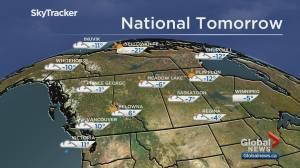 Edmonton weather forecast: Nov 14 (03:38)