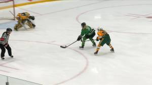 Saskatchewan Huskies hockey teams head into break on a roll