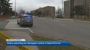 Police on the hunt for hit-and run-driver after woman fatally struck in North Toronto