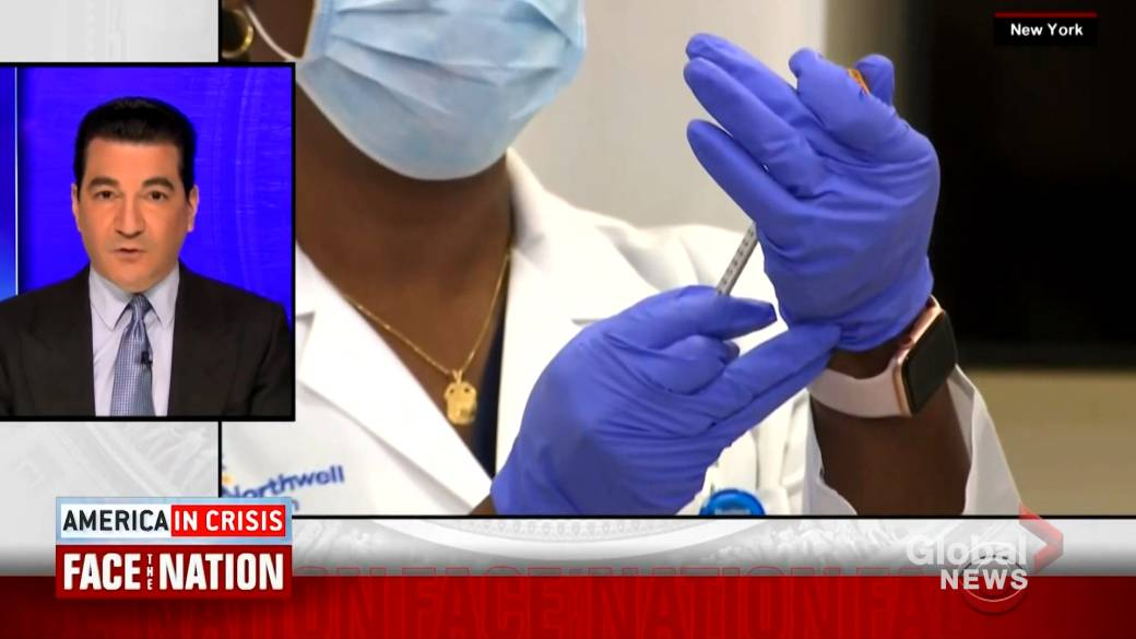 Click to play video 'Coronavirus: U.S. COVID-19 infections could peak after first week of January, says Gottlieb'