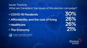 Canada election: Which issues are top-of-mind for Canadians? (03:06)