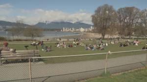 B.C. officials urge caution with Step 2 of restart plan (03:28)