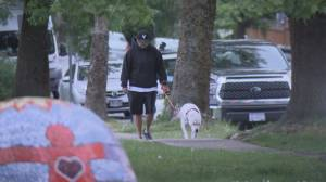 More racist attacks reported in Lower Mainland amid COVID-19