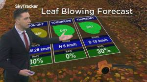 Kelowna Weather Forecast: October 22