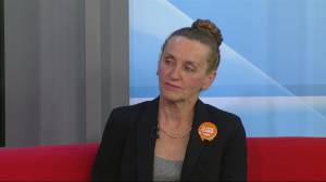 Claire Card on the NDP's plan for the economy