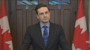 Pierre Poilievre says 'too early to say' if running for leadership, outlines what party needs