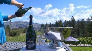 minimony wedding packages in the Okanagan