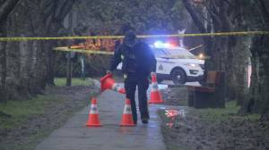 Steveston neighbourhood rocked by gang killing (02:08)