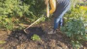 Play video: GardenWorks: spring gardening tips