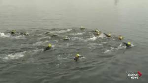 Nova Scotia United Way Charity Swims