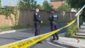 Homicide unit investigates stabbing involving mother, father and adult son (02:14)