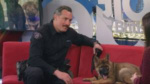 RCMP puppy naming contest