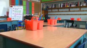 Spike in absentee teachers in Belleville, Ont. area causes shortage