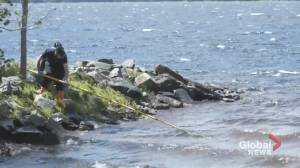 Contamination source in Grand Lake believed to come from blue-green algae exposure (01:51)