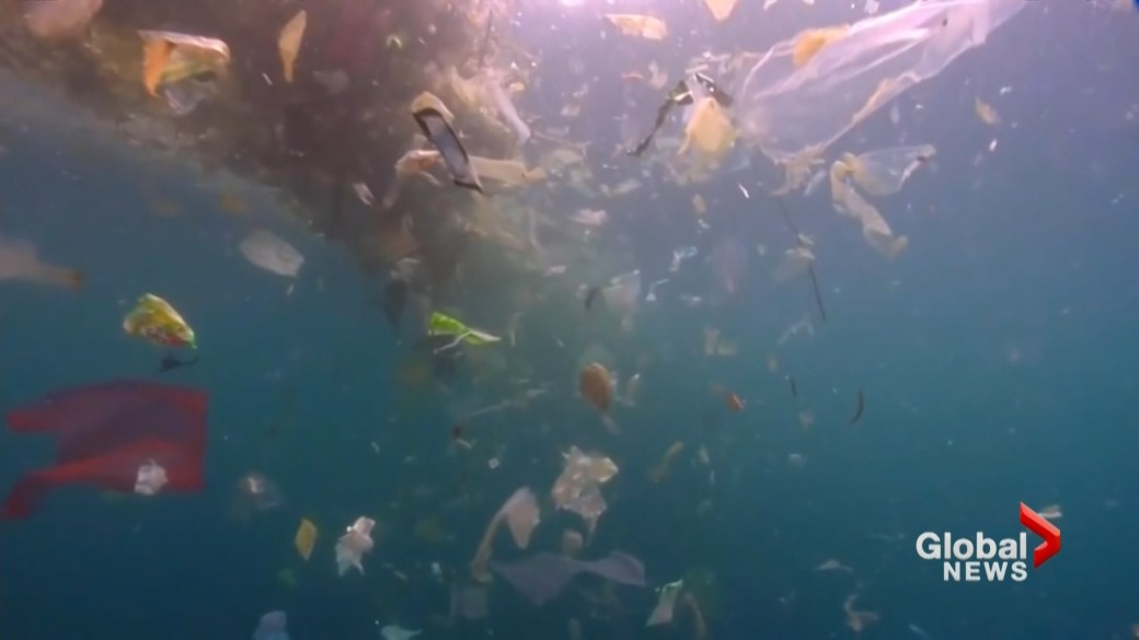 Click to play video: 'Microscopic plastics polluting our waterways'