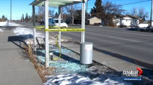 Numerous Calgary bus shelters damaged (01:58)