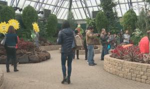 City of Edmonton debates changing Free Admission Day