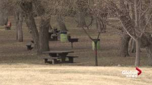 Edmonton releases 2021 plans for parks, playgrounds, grass maintenance (01:19)