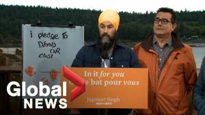 Federal Election 2019: Singh announces Coastal Protection Fund in pledge to fight climate crisis