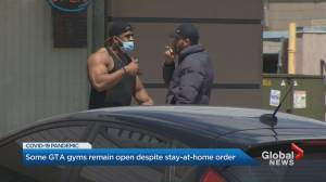 Gym stays open despite City of Mississauga efforts, others use law to justify seeing clients (02:09)