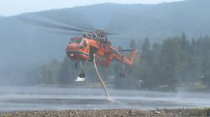 B.C. wildfires: Rail networks pledge funds, reuniting pets, Napier Lake and Canim Lake update (04:54)