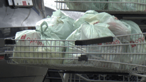 Study shows independent grocers seeing growth during COVID-19 pandemic (02:30)