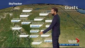 Edmonton afternoon weather forecast: Wednesday, August 12, 2020