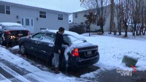 New Brunswick hit with first dose of winter weather