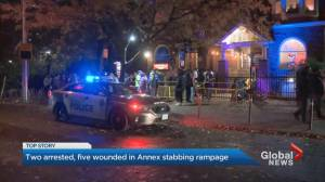 Stabbing at Annex Halloween party leaves five injured