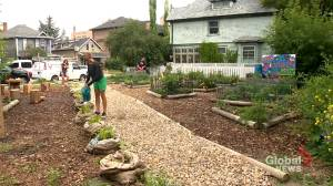 Calgary man turns property damaged by 2013 floods into community garden amid pandemic