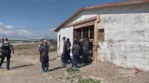 Animal activists occupy Hutterite turkey farm near Fort MacLeod (01:52)