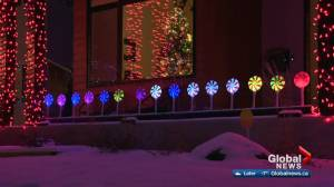 Edmonton's Candy Cane Lane will be drive-thru only this year due to COVID-19 (01:54)