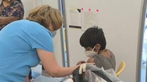 Toronto's top doctor makes plea for mandatory vaccines in schools (05:36)