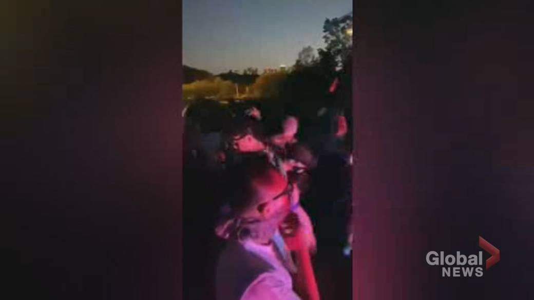 Click to play video: 'Toronto police concerned about number of outdoor parties popping up amid COVID-19'