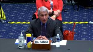Coronavirus: Dr. Fauci says it's a matter of 'when, not if' U.S. develops a COVID-19 vaccine