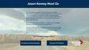 Campaign to remove Jason Kenney as premier goes online (01:52)