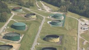Calls to release safety study on Trans Mountain tank farms
