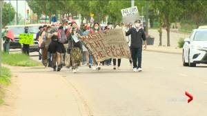 Saskatoon Police Commissioners Board to receive letters requesting police be defunded