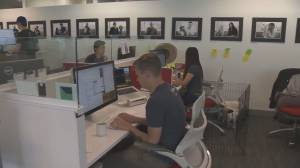 New poll suggest B.C. small businesses can't afford paid sick leave (01:46)