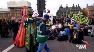 Extinction Rebellion protesters dance, sing, do yoga on London's Westminster Bridge (00:53)